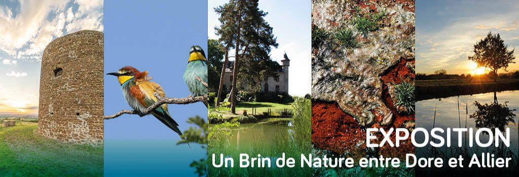 Exposition Un Brin de Nature dans vos commerces